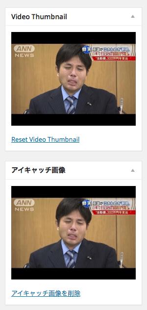 WP VideoThumbnails 04